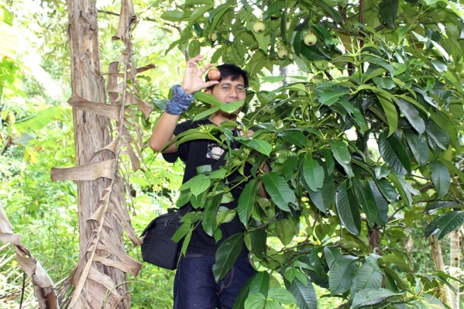 Foto bareng pohon manggis.... Cheque